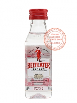 Beefeater Dry Gin Plastic, Version 2018